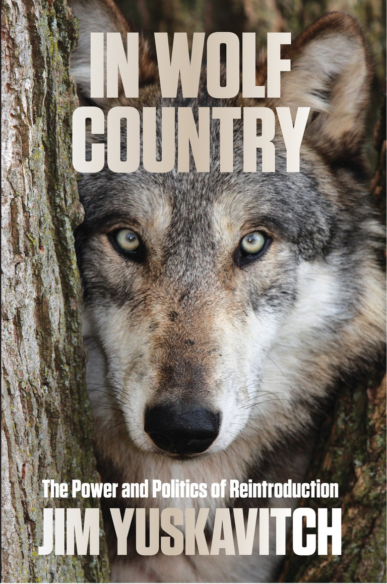 In Wolf Country Single Cover